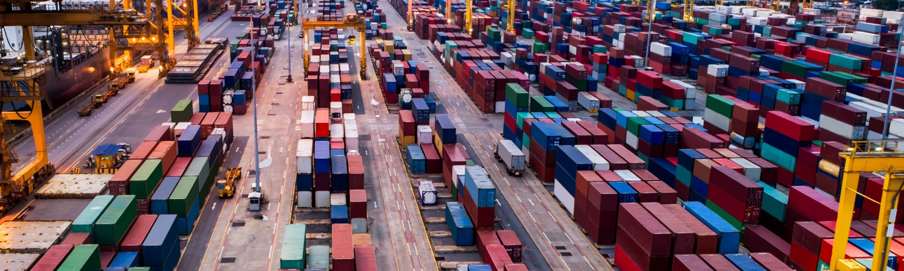 COVID-19: Supply Chain Lessons from Asia