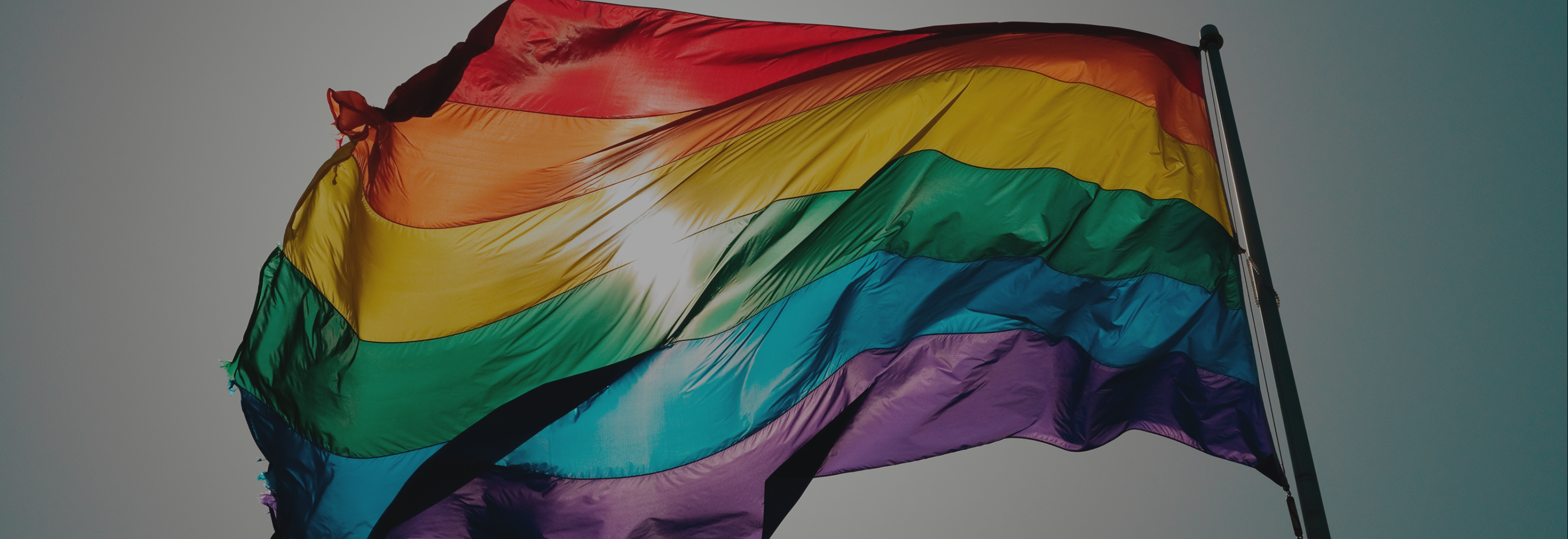 LGBTQ+ at Egon Zehnder: Our Commitment and Responsibility