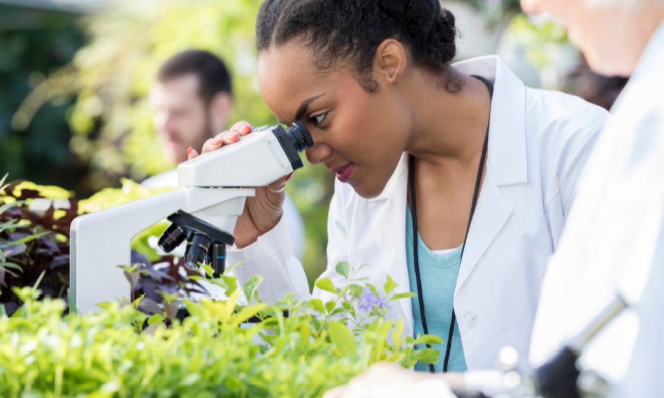 Confronting the Challenge of Attracting and Retaining African Scientists to the Continent
